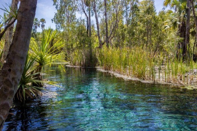 Mataranka Hot Springs, NT