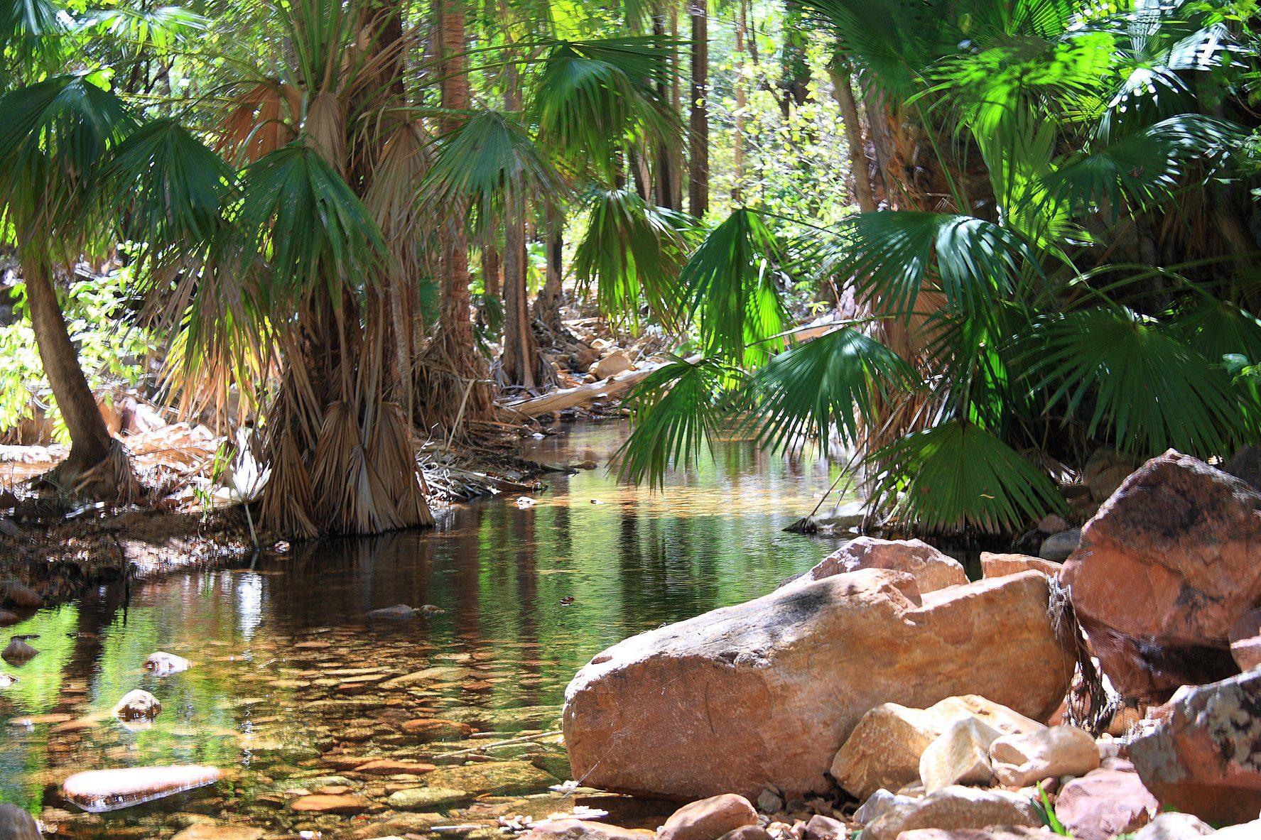 Zebedee Hot Springs at El Questro Station, Western Australia