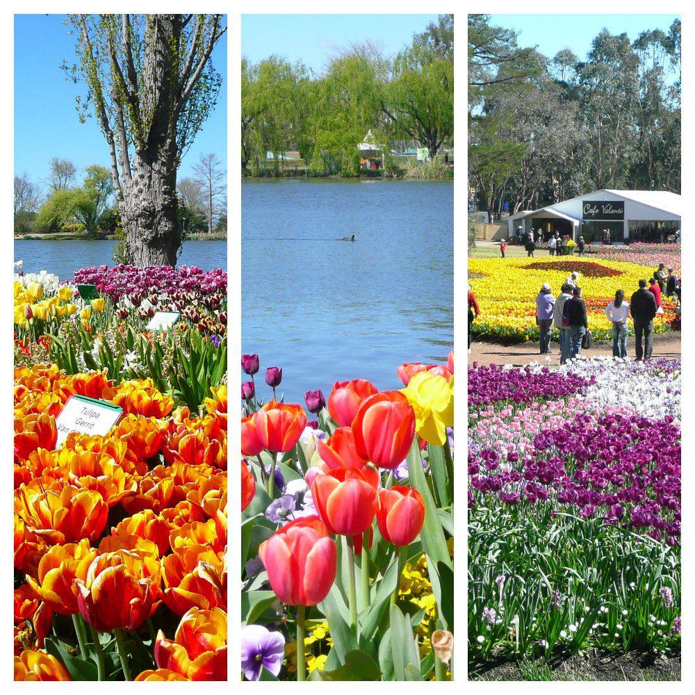 Floriade in Canberra Australia