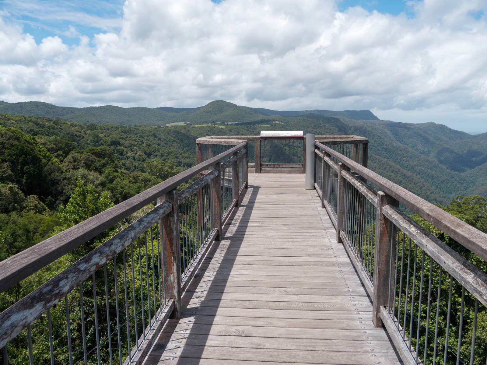 Dorrigo National Park Skywalk
