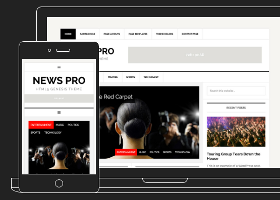 News Pro WordPress Theme