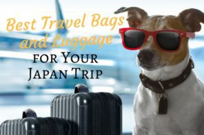 Best Travel Bags and Luggage for Your Japan Trip