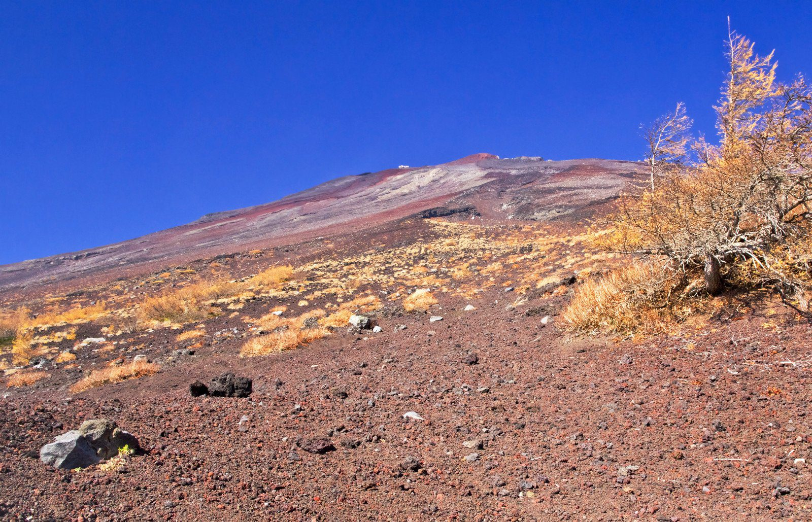 Looking up while climbing Mt Fuji
