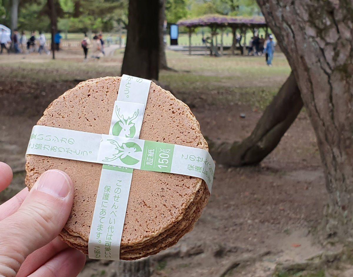 Deer Food at Nara
