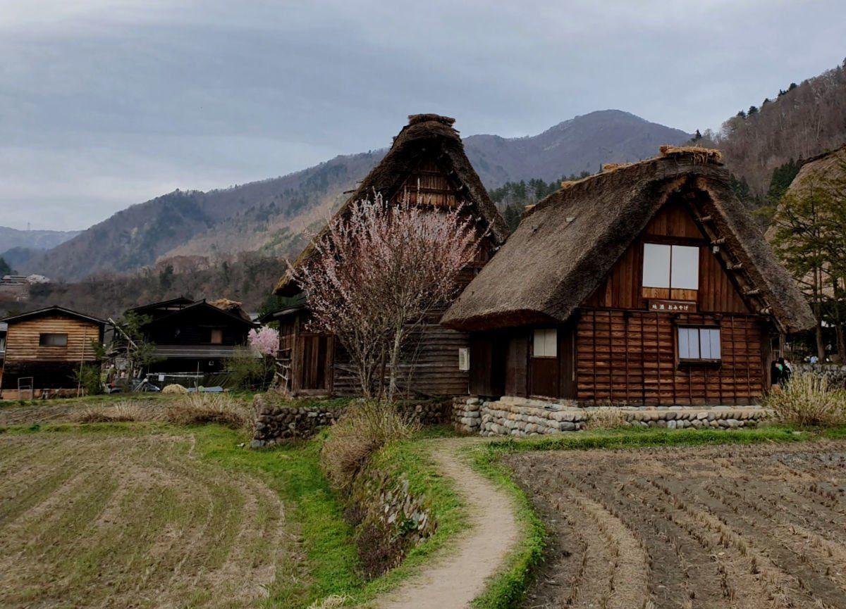 Shirakawa-go Traditional Village