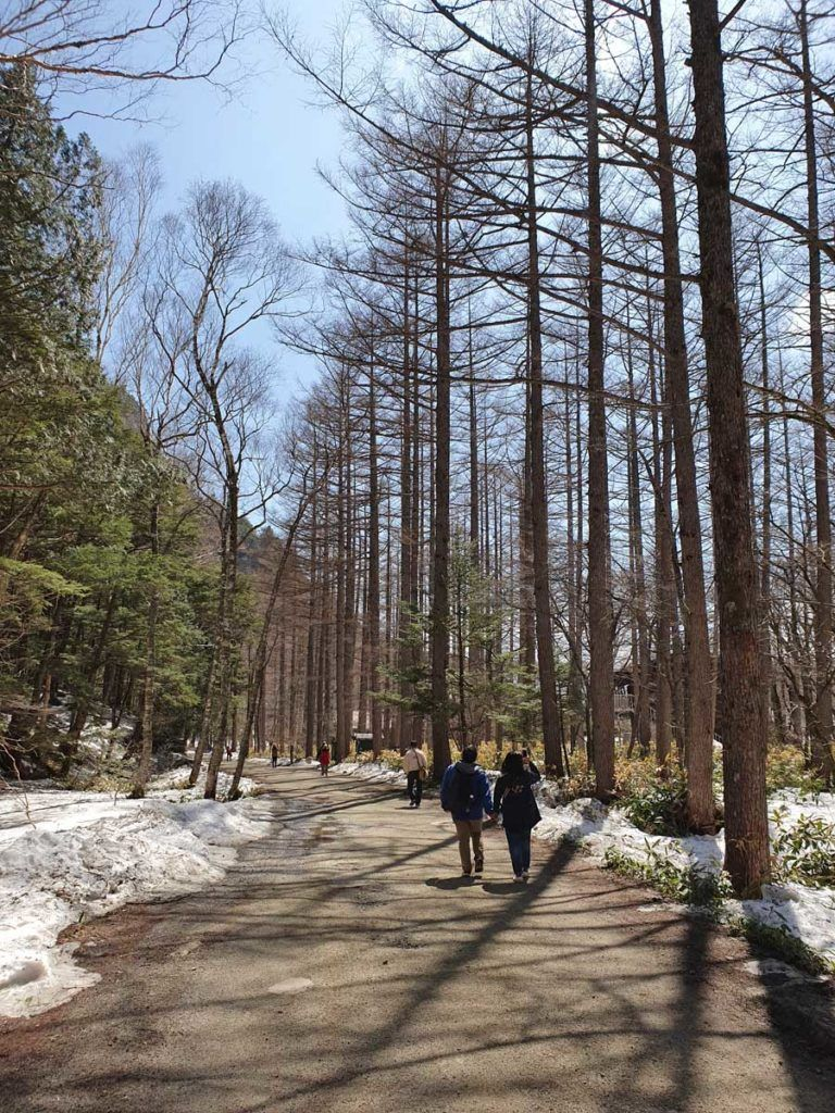 Walking through Kamikochi National Park