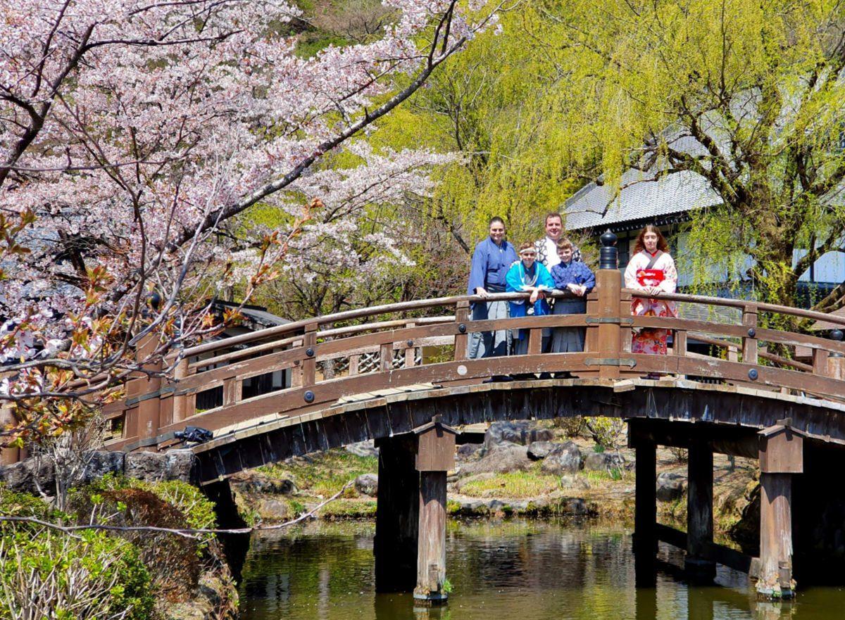Cherry Blossom Views at Edo Wonderland in Nikko