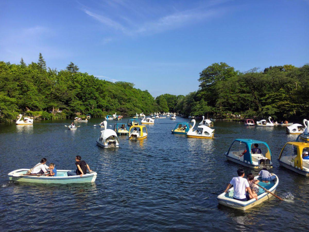 Kichojoji Park in Spring by Erika's Travelventures