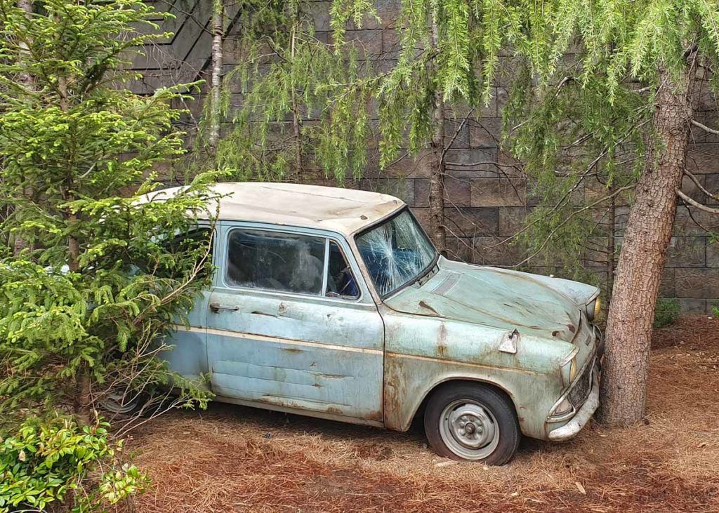 Ron's Flying Ford Anglia