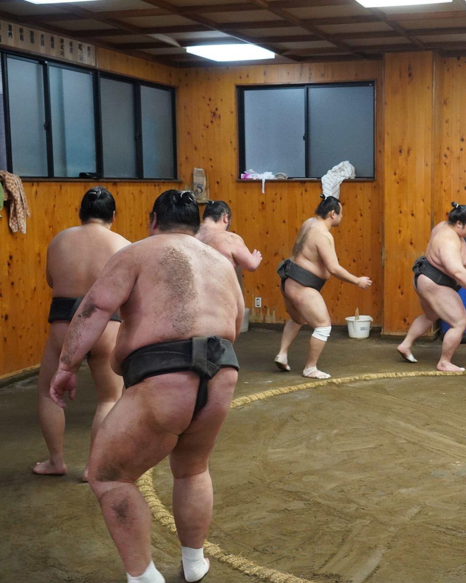 Sumo Training Exercise