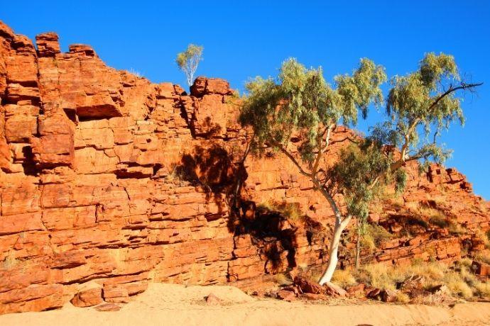 Trephina Gorge near Alice Springs
