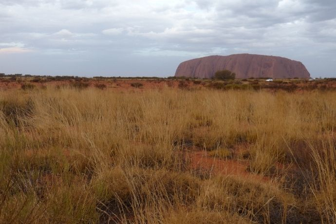 Views of Uluru
